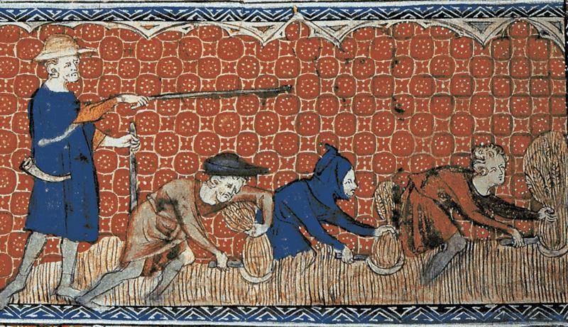 Prikaz kuluka na kraljevskom imanju s brevijara kraljice Marije, oko 1310. godine (Izvor: commons.wikimedia.org)