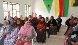Direktna demokracija u Rojavi (Izvor: Crvena akcija)
