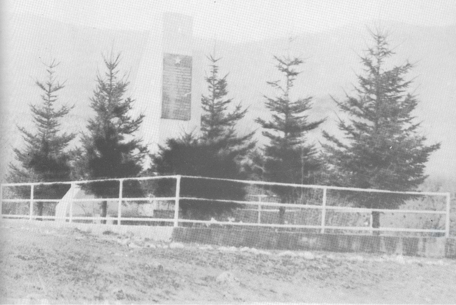 Nekadašnje spomen-obilježje pobijenim stanovnicima sela Meljinovac na lokalitetu Delić jama (izvor: Znaci.net).